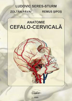 Anatomie cefalo-cervicală