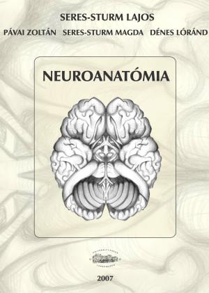 Neuroanatómia