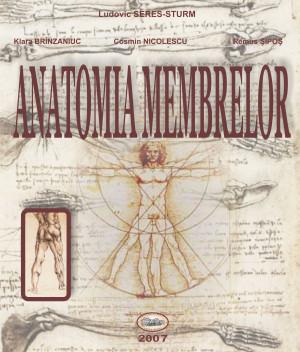 Anatomia membrelor