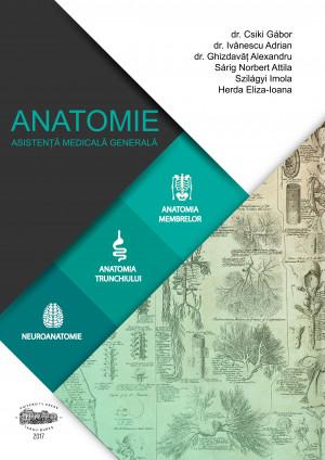 Anatomie pentru AMG
